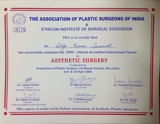 AISE 2008 - APSI - Ethicon Accredited Instructional Course in Aesthetic Surgery